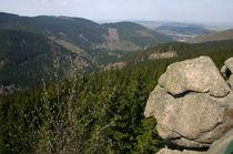 Mount Rushmore im Harz von rheo