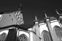 Freiberger Dom von rheo
