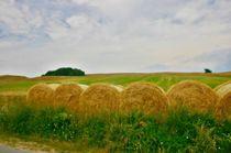 Strohballen am Wegesrand by rheo