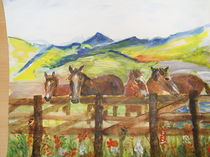 Pferde auf der Weide by Eva Jacqueline Weniger