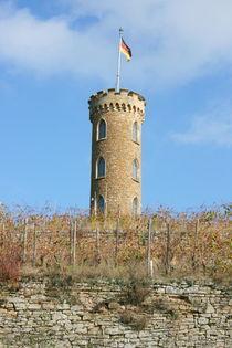 Turm im Weinberg  by hadot