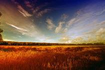 Natur Pur by fotodehro