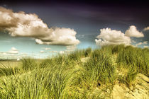 Düne Surreal by fotodehro