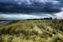 Dramatic Dune by fotodehro