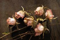 Welke Rosen von pahit