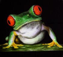 Frosch von Jörg Patzschke