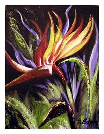 Feuerblüte von Irena Scholz