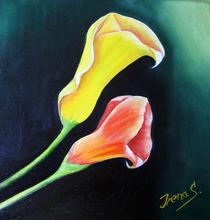 Callas  von Irena Scholz