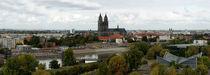 Blick auf Elbe und Dom in Magdeburg im Herbst - Pa by magdeburgerin