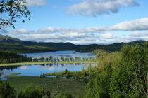 Norwegen - Blick aus dem Fenster in der Telemark von magdeburgerin