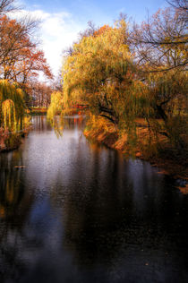 Herbst am See by magdeburgerin