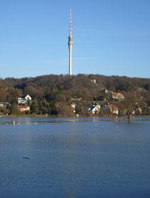 Hochwasser an der Elbe by Michael Kunath