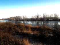 Am Fluss by Manfred Gildemeister