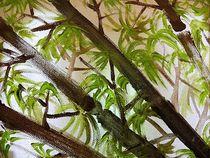 Bambus by kunstmkm