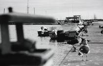 Boatyard by Bruno Viegas