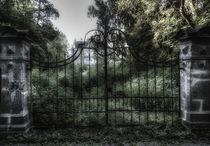 Villa Nordstern2