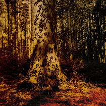 Der Baum by yellowbird