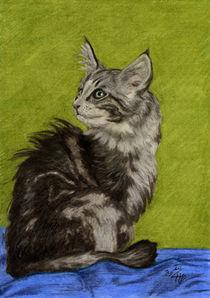 Flauschige Katze von Klara Luise Maxeiner