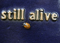 still alive by rubyred