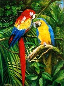 Papageien by Veronika Gessl