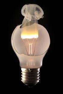 ausgebrannte Glühbirne von Dieter Brockmann