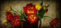 Tulpensymphonie by waidlafoto