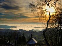 über dem Nebel by waidlafoto