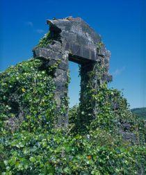 Ruine eines Hauseingangs auf den Azoren, Portugal, Europa  von Willy Matheisl