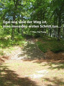 Weg von Sonja R. Klein