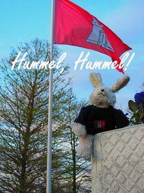 Hummel, Hummel! skyo der Hamburg Hase