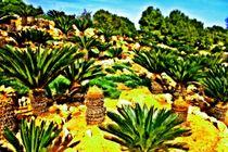 Palmen von Hans Haller