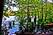 Versteckter Waldsee von Hans Haller