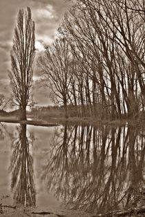 Mirror lake von Hans Haller