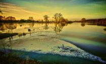 Hochwasser  von Cornelia Dettmer