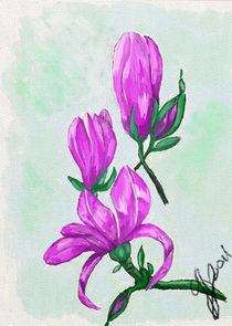 Magnolie by gabriela baumann