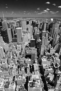 New York Manhattan by Marc Mielzarjewicz