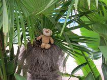 Unter den Palmen by Olga Sander