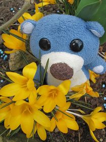 Frühling ist da! by Olga Sander