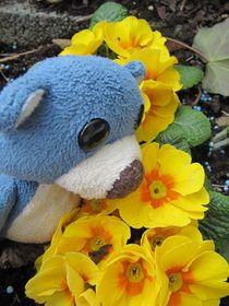Der Frühling riecht so schön! by Olga Sander