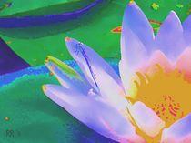 Seerose 1, Serie Flora und Fauna by maneraart