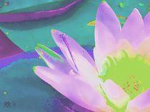 Seerose 2, Serie Flora und Fauna by maneraart