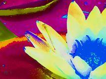 Seerose 5, Serie Flora und Fauna by maneraart