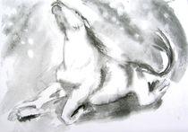 Pferdesturz von Noel Koehn