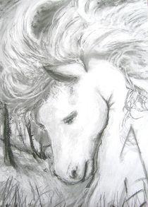 Pferd 001 von Noel Koehn