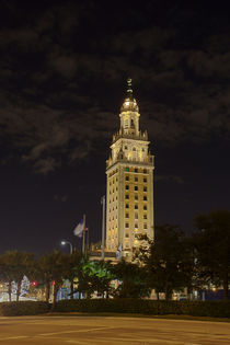 Freedom Tower Miami by Mario Hommes