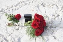 Hochzeitsrosen am Strand von Mario Hommes