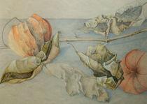 Lampion von Sandra Göckeritz