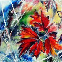 Ahornblatt im Frost von Sabine Berger