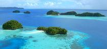 Palau - Three Palm Island by marcowand