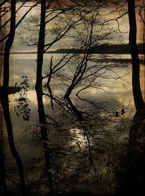Autumn reflections von Evita Knospina